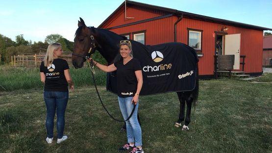 Erfahrungsbericht Rudi Haller mit Orlando Jet, Futterkohle für Pferde
