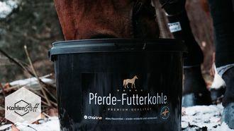 Kotwasser bei Pferden | KohlenStoff powered by CharLine GmbH