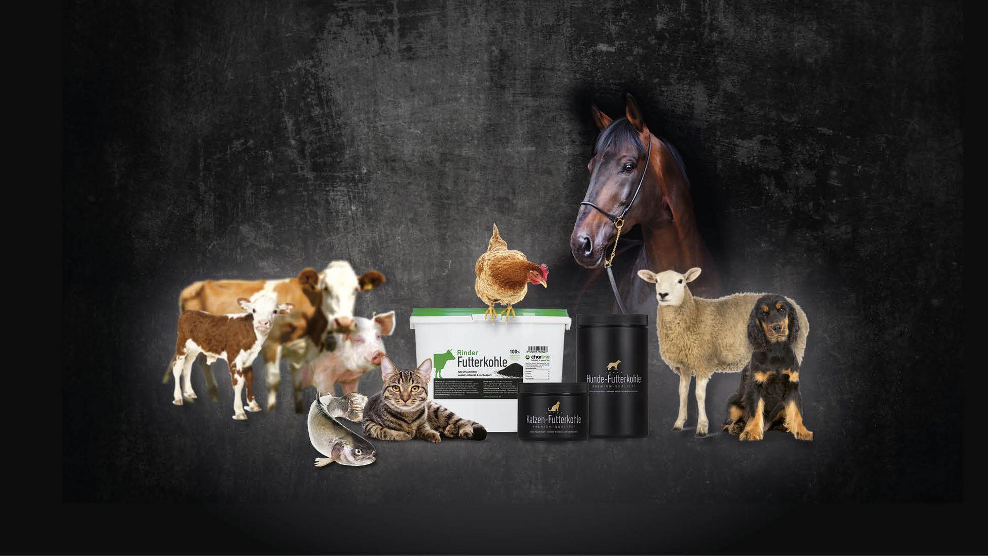 Futterkohle | CharLine GmbH