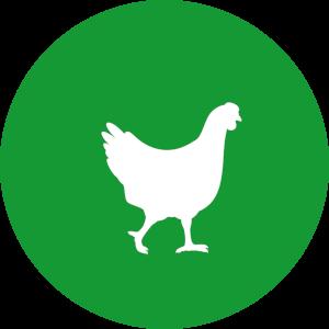 Futterkohle für Geflügel Button | CharLine GmbH