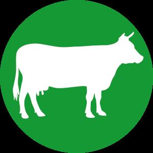 Futterkohle für Rinder Button | CharLine GmbH