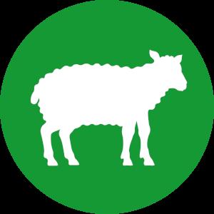 Futterkohle für Schafe Button | CharLine GmbH