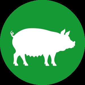 Futterkohle für Schweine Button | CharLine GmbH