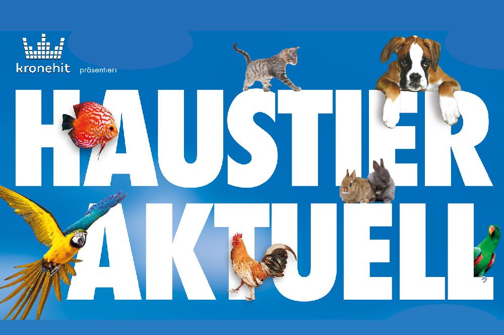 Haustier Aktuell | Wiener Neustadt | CharLine Futterkohle